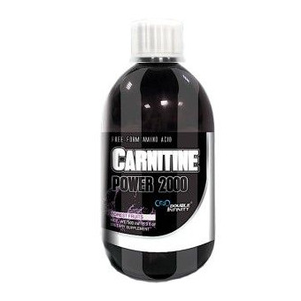 L-Carnitine Power 2000